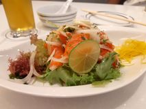 Pérdida de peso de color salmón de la ensalada Dinne imagen de archivo libre de regalías