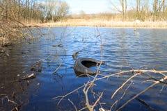 Pérdida y contaminación de nuestro ambiente y canales fotos de archivo
