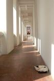 Période du reste du chat Dans un environnement tranquille Image libre de droits