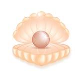Pérola cor-de-rosa realística no shell ilustração royalty free