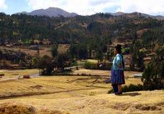 Péruvien photo libre de droits
