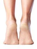 pés imagem de stock