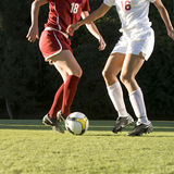 Pés & esfera do futebol Fotografia de Stock Royalty Free