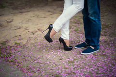 Pés bonitos da moça nos saltos altos ao lado do homem nas pétalas cor-de-rosa da flor, estilo dos pés, forma, conceito, romance Imagens de Stock Royalty Free