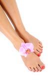 Pés bonitos do pé com o pedicure perfeito dos termas Fotografia de Stock Royalty Free