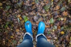 Pés da mulher em gumboots azuis contra o fundo das folhas de outono Imagem de Stock