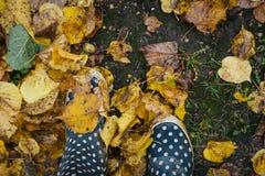 Pés da mulher nas botas de borracha amalucados que estão em uma terra com as folhas caídas alaranjadas e amarelas no outono Fotos de Stock Royalty Free