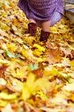 Pés da mulher nas folhas de outono Fotos de Stock Royalty Free