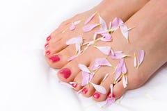 Pés da mulher nas pétalas do lilac Imagem de Stock Royalty Free