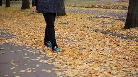 Pés da mulher que andam no parque HD do outono filme