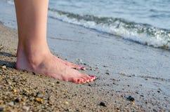 Pés da praia Imagem de Stock