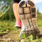 Pés de passeio ou de corrida na floresta, na aventura e no exercício fotografia de stock