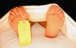 Pés de um corpo em uma morgue Fotografia de Stock Royalty Free