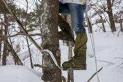 Pés de um homem que escala uma árvore com os montanhistas do polo em seus pés Inverno imagens de stock
