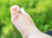 Pés desencapados do bebê pequeno com a flor na grama verde fresca Fotos de Stock Royalty Free