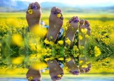 pés desencapados, ruptura, flores da mola e belezas de relaxamento Imagens de Stock