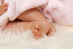 Pés do bebê Fotos de Stock Royalty Free