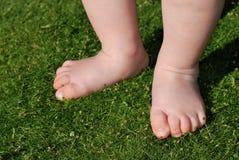 Pés do bebê na grama ao ar livre Imagem de Stock