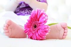 Pés do bebê nas flores Fotografia de Stock