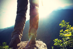 Pés do caminhante da jovem mulher no pico de montanha do nascer do sol Fotos de Stock