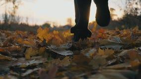 Pés do desportista masculino que correm no parque do outono que pisa nas folhas caídas secas Treinamento do atleta na natureza no filme
