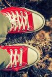 Pés do ` s da mulher nas sapatilhas vermelhas brilhantes da lona Fotografia de Stock Royalty Free
