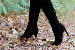 Pés do ` s das mulheres nas botas nas folhas imagens de stock royalty free