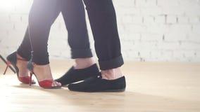 Pés dos dançarinos que vestem sapatas da forma - o par da família está dançando o kizomba no estúdio video estoque