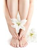 Pés e braços despidos fêmeas com lírios brancos Fotos de Stock Royalty Free