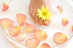 Pés e flores Imagem de Stock Royalty Free