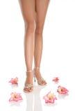 Pés e flores da mulher Imagens de Stock Royalty Free