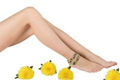 Pés e flores da mulher Imagem de Stock Royalty Free