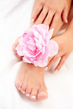Pés e mãos bonitos Foto de Stock Royalty Free