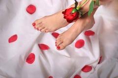 Pés e Rosa vermelha Fotografia de Stock Royalty Free