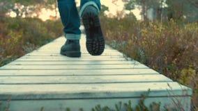 Pés em caminhar as botas que andam através da floresta do outono, fim acima Floresta de Noruega vídeos de arquivo