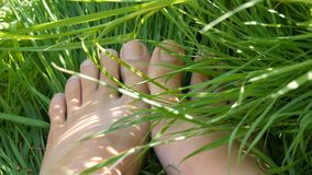 Pés fêmeas na areia contra o fundo da grama verde vídeos de arquivo