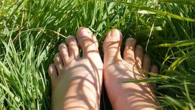 Pés fêmeas na areia contra o fundo da grama verde video estoque