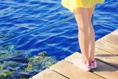 Pés gregários na ponte de madeira no mar Imagem de Stock Royalty Free