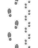 Pés humanos e patas do cão Foto de Stock