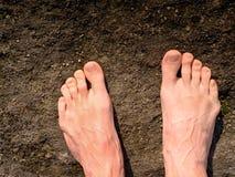 Pés masculinos despidos no arenito seco Pele cor-de-rosa fresca, tnails do shor Pé na terra pura da natureza Imagem de Stock