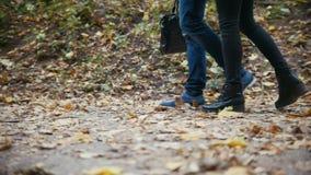Pés masculinos e fêmeas que andam nas folhas de outono - lento-movimento filme