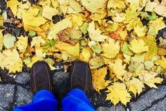 Pés nas folhas de outono Imagens de Stock Royalty Free