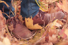 Pés nas folhas de outono Foto de Stock Royalty Free