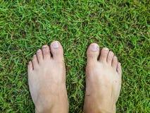 Pés no campo de grama Foto de Stock Royalty Free
