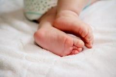 Pés pequenos do bebê Fotografia de Stock Royalty Free