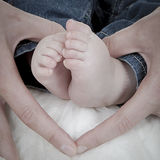 Pés recém-nascidos Imagens de Stock