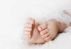 Pés recém-nascidos Imagem de Stock Royalty Free
