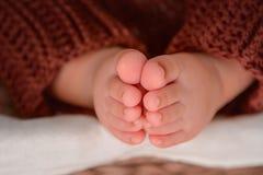Pés recém-nascidos do bebê Fotos de Stock Royalty Free