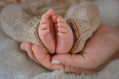 Pés recém-nascidos do bebê Fotografia de Stock