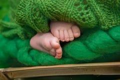 Pés recém-nascidos do bebê Imagem de Stock